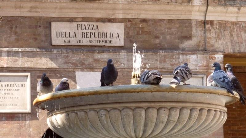 Urbino_800_06