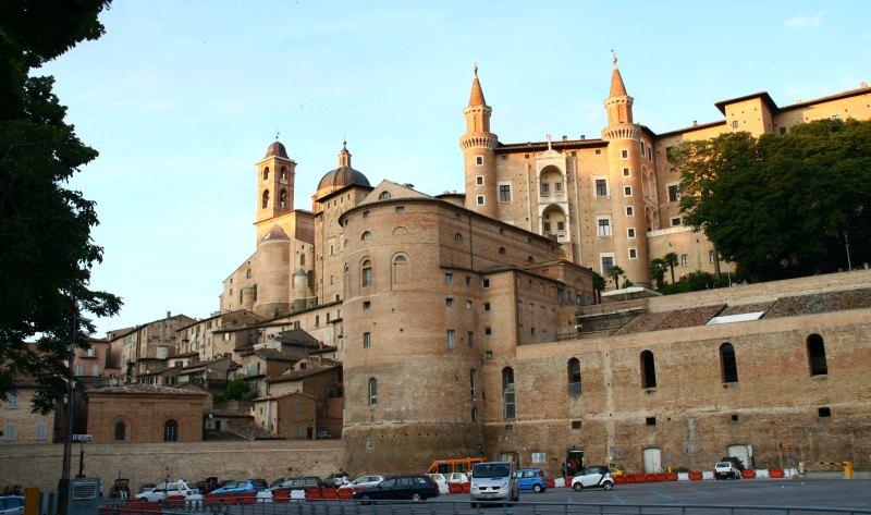 Urbino 24
